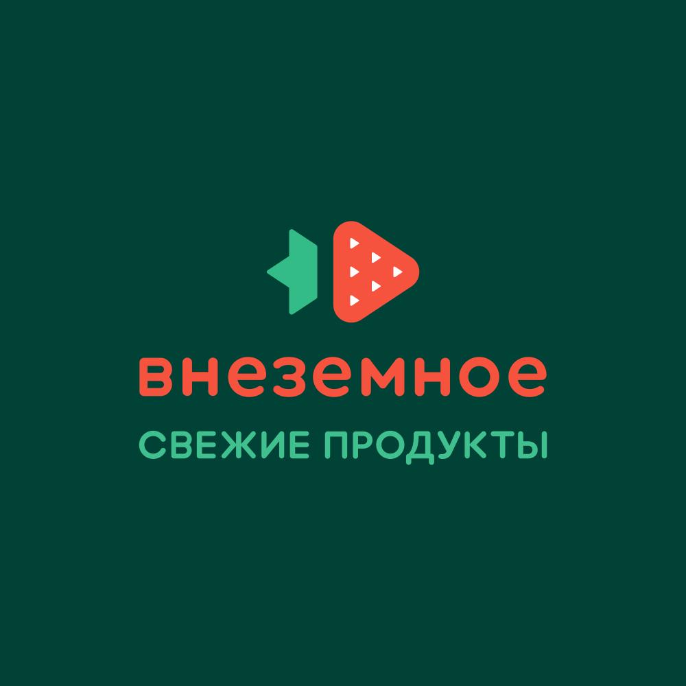 "Логотип и фирменный стиль ""Внеземное"" фото f_8965e753e6b98922.jpg"