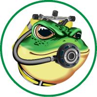 Лягушка-дайвер