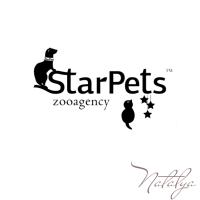 Starpets