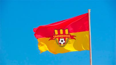 Футбольный клуб UNDERDOG - разработать фирстиль и бренд-бук фото f_2715cb3e3518ef16.jpg