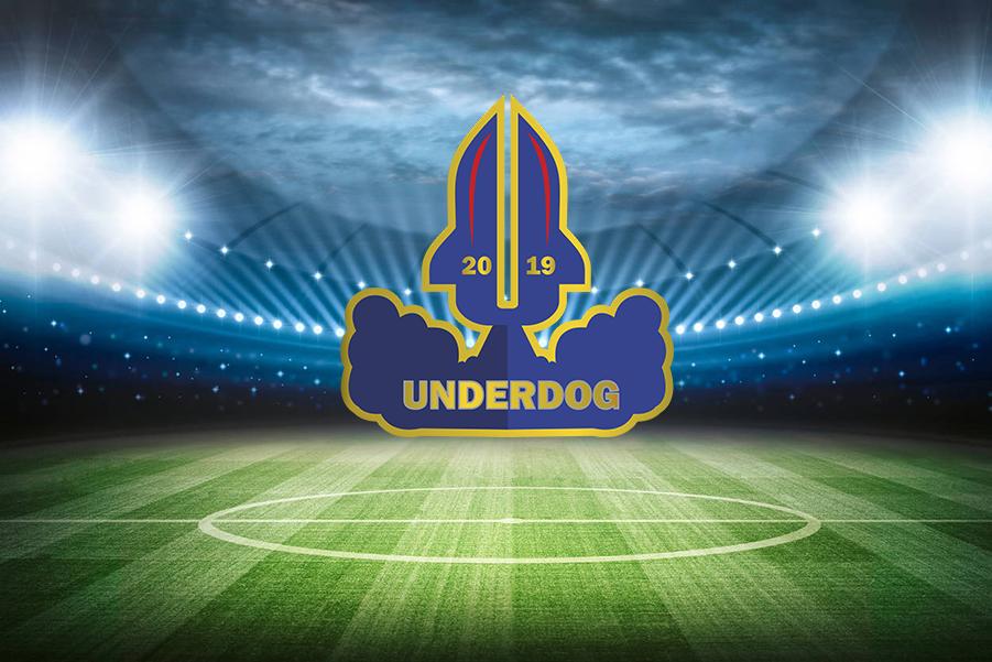 Футбольный клуб UNDERDOG - разработать фирстиль и бренд-бук фото f_6735cb3aac10d697.png