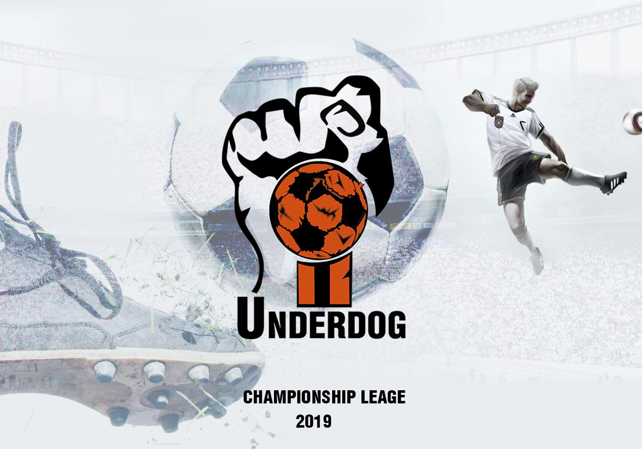 Футбольный клуб UNDERDOG - разработать фирстиль и бренд-бук фото f_7695cafba8467d6e.png