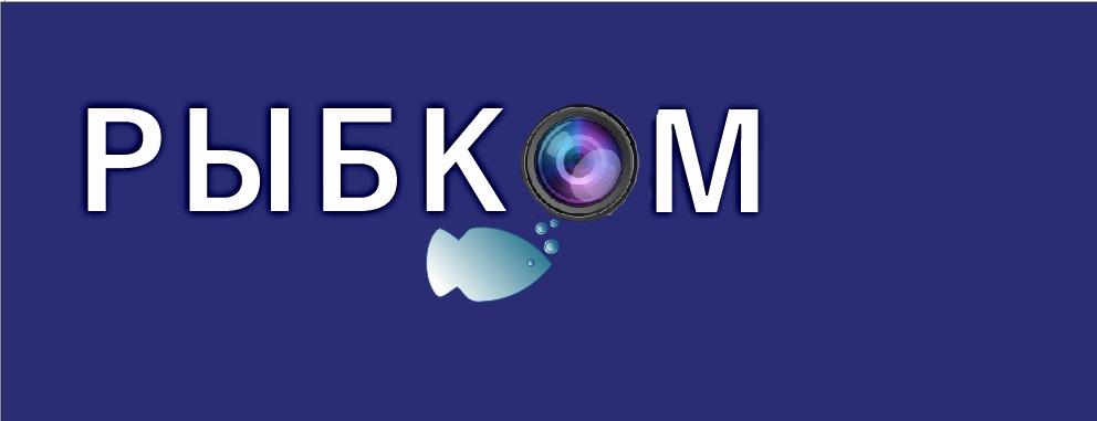Создание логотипа и брэндбука для компании РЫБКОМ фото f_4415c1404ab21965.jpg
