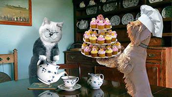 Создать интересный коллаж с участием животных фото f_67951d6fa01505e0.jpg