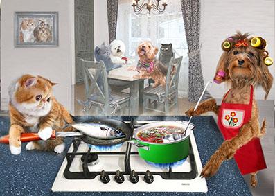 Создать интересный коллаж с участием животных фото f_74451dc76b857e78.jpg