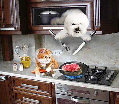 Создать интересный коллаж с участием животных фото f_91751e07dc989993.jpg