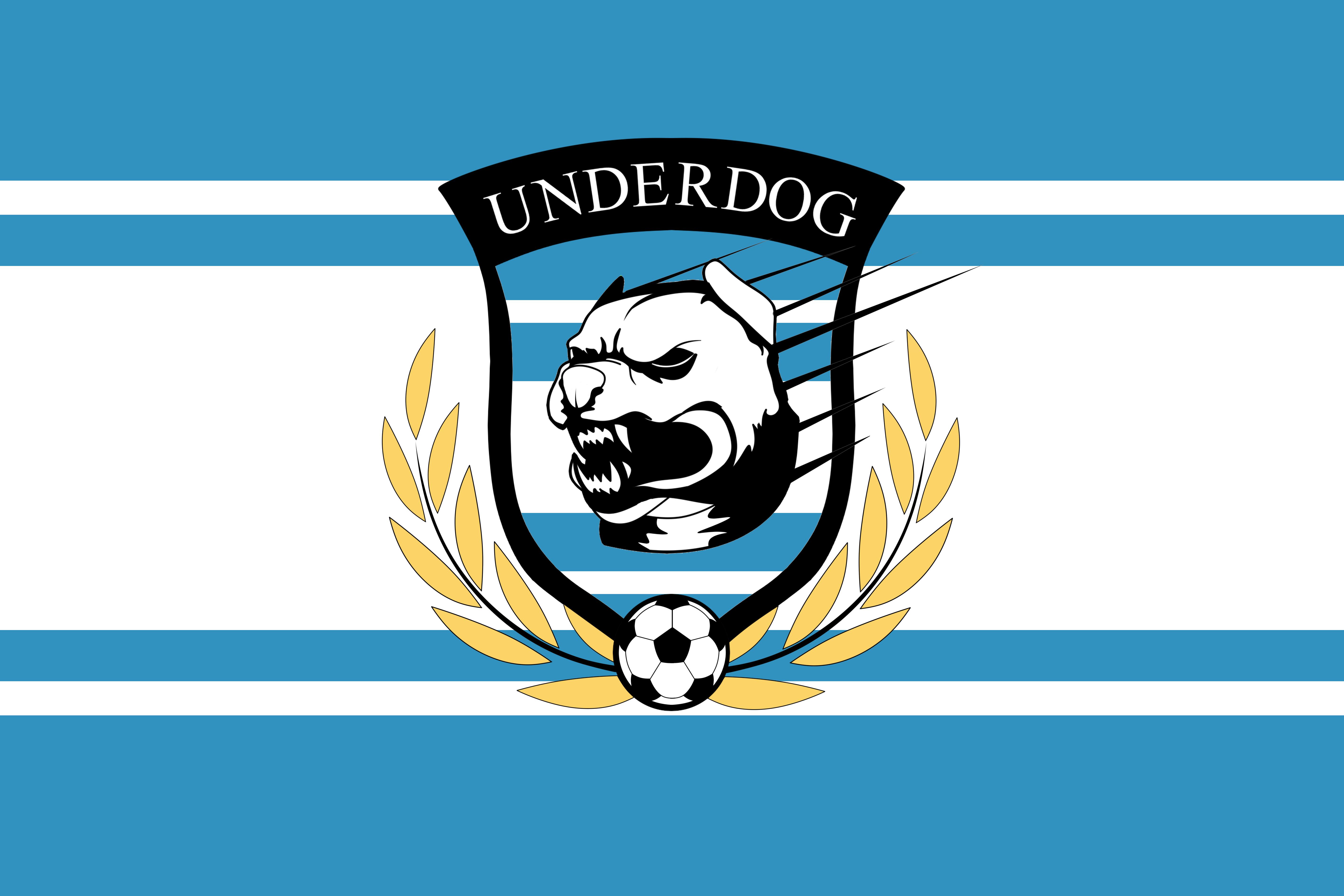 Футбольный клуб UNDERDOG - разработать фирстиль и бренд-бук фото f_0405caf385e95d30.png