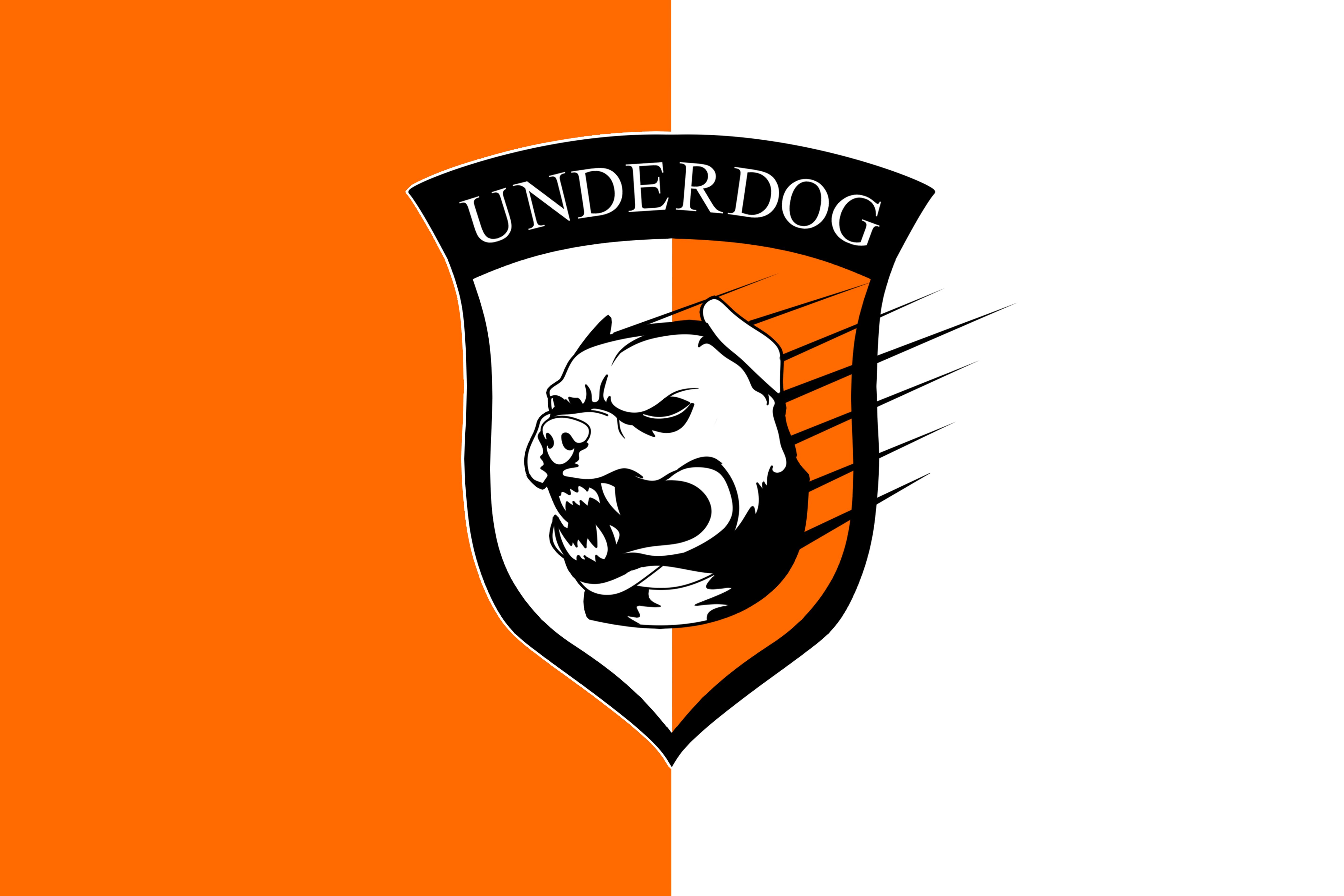 Футбольный клуб UNDERDOG - разработать фирстиль и бренд-бук фото f_1625caf0f19f3828.png