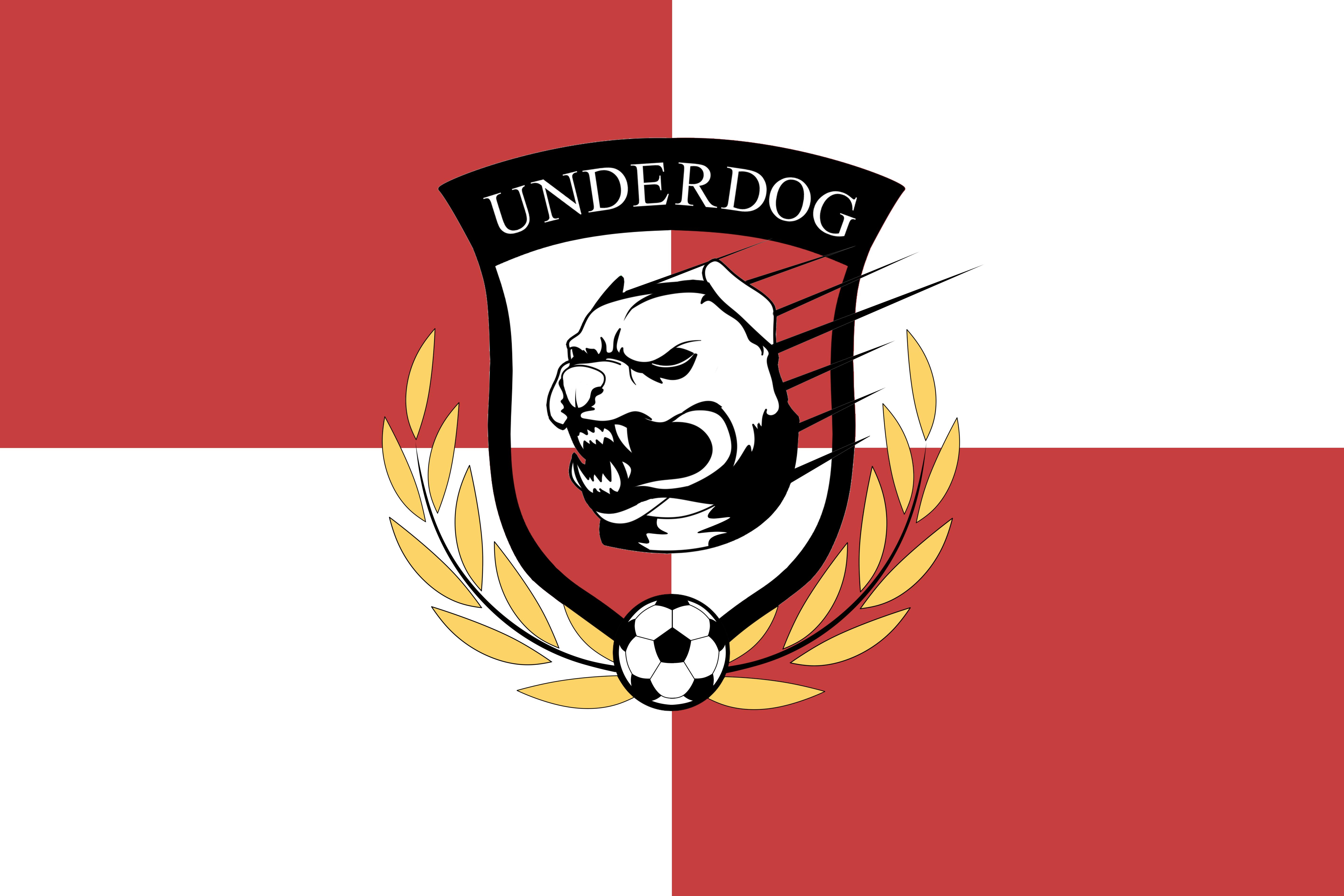 Футбольный клуб UNDERDOG - разработать фирстиль и бренд-бук фото f_6845caf385aaa413.png