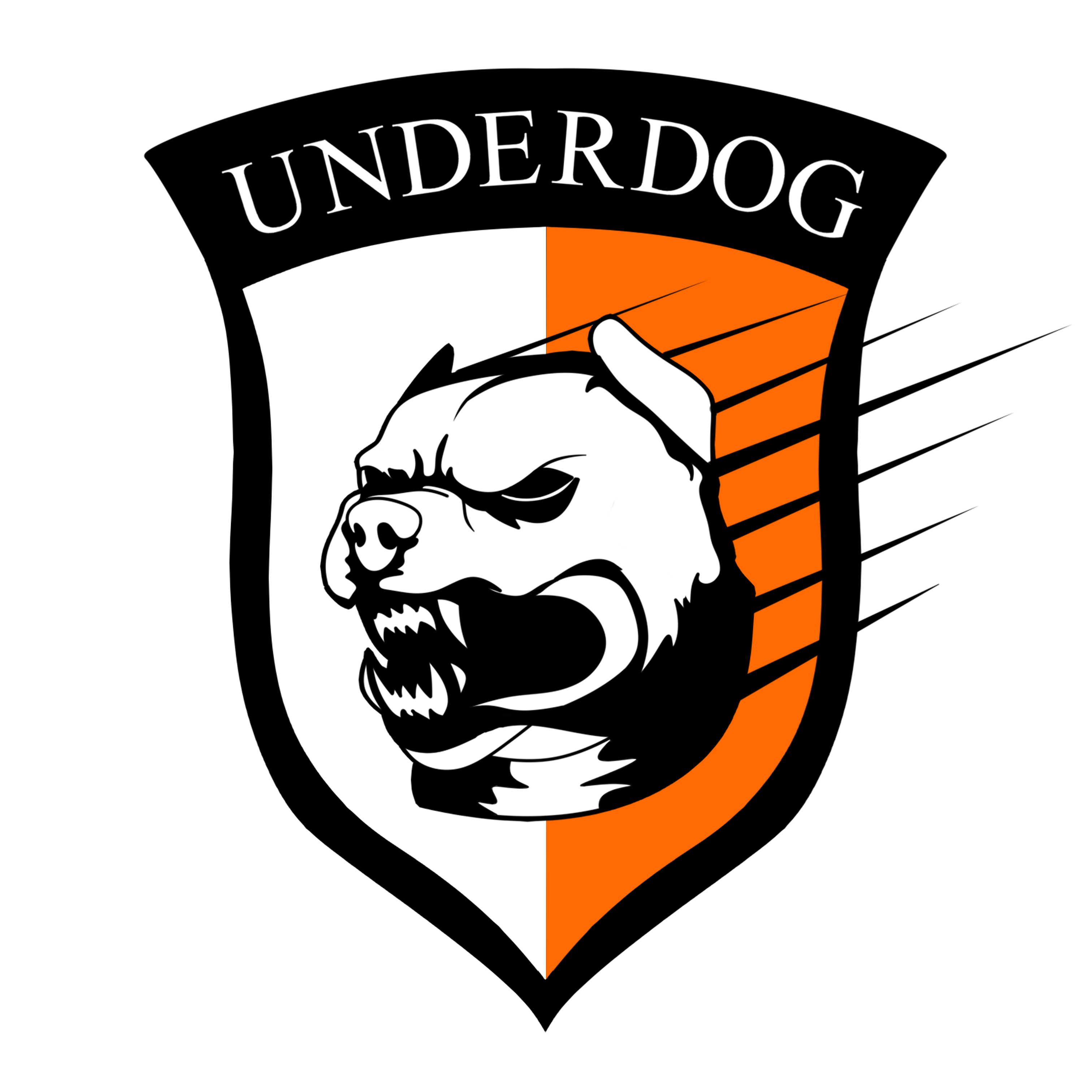 Футбольный клуб UNDERDOG - разработать фирстиль и бренд-бук фото f_8485caf0f15da14d.png