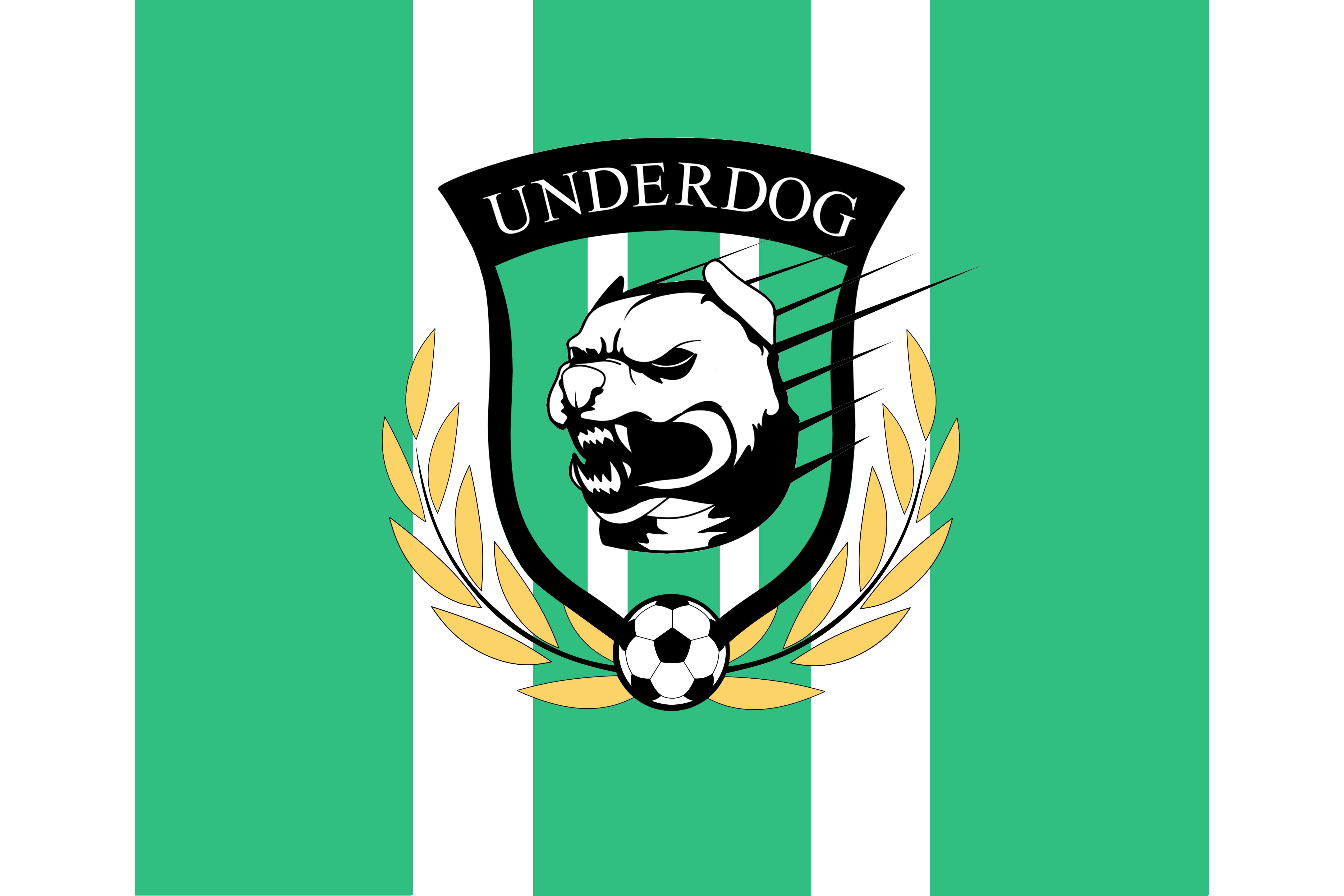 Футбольный клуб UNDERDOG - разработать фирстиль и бренд-бук фото f_9805caf3862eeb34.png