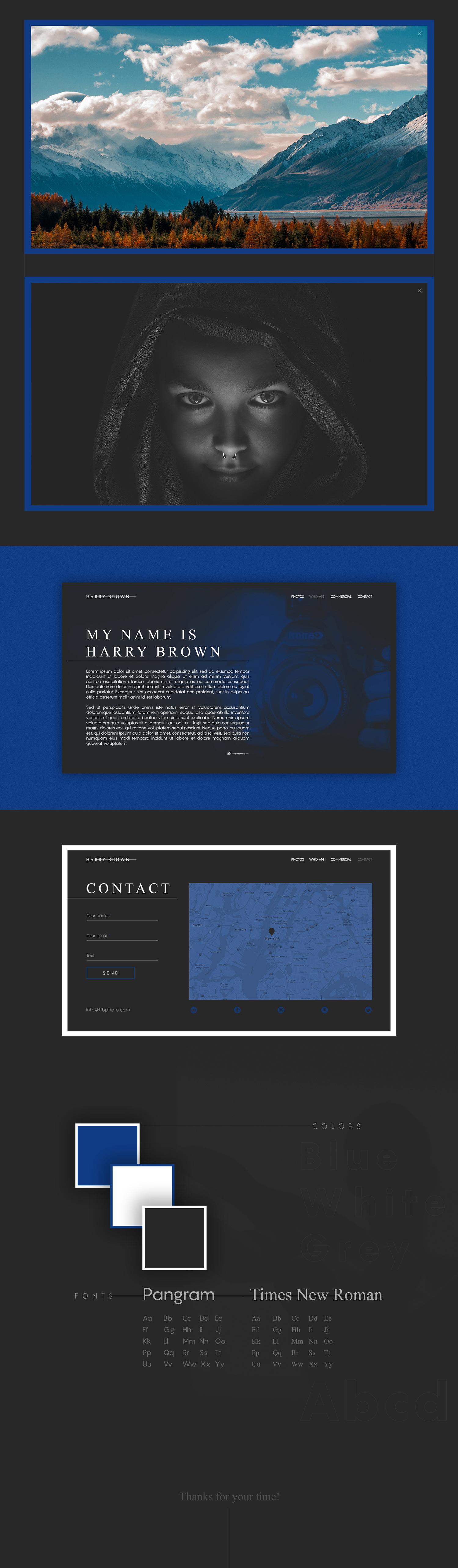 Harry Brown - website concept