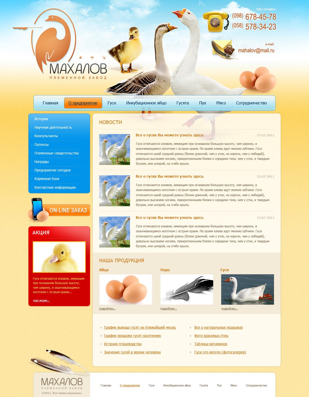 Редизайн сайта. фото f_4e8046f3a3d05.jpg