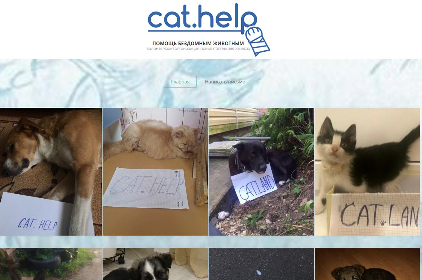 логотип для сайта и группы вк - cat.help фото f_96559db9688af3d4.jpg