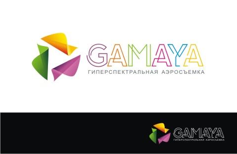 Разработка логотипа для компании Gamaya фото f_5565487395b0e1a1.jpg