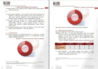 Анализ российского рынка одежды для беременных, 2012