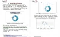 Анализ российского рынка купальников, 2012