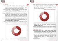 Анализ рынка организации дилерской сети, продажи инновационного товара в РФ и Казахстане, 2013