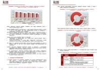 Анализ рынка аквапарков, 2013