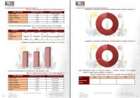 Анализ рынка для строительства тепличного комплекса по выращиванию цветов, РФ 2013