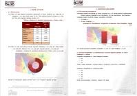 Анализ рынка Рекламных агенств в РФ, 2013