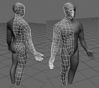 3d-модель человеческого тела