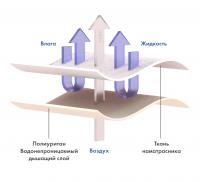 Схема ткани