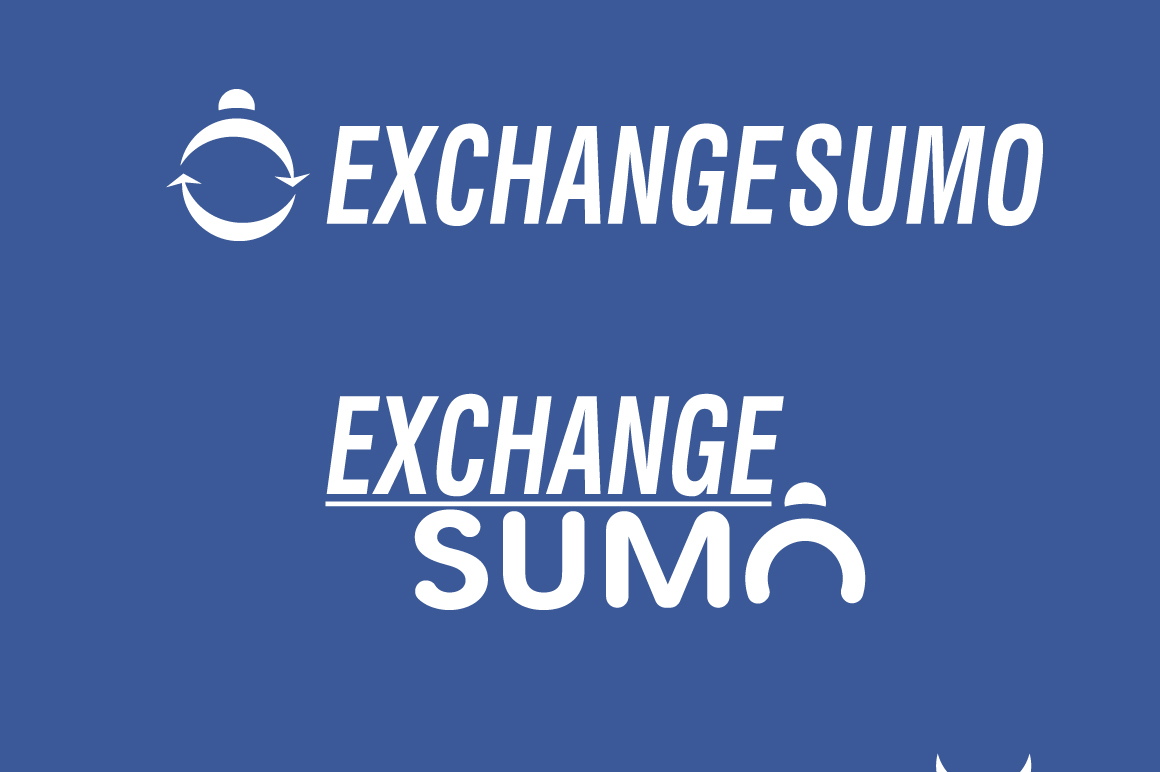 Логотип для мониторинга обменников фото f_3905baa25c36f23c.jpg