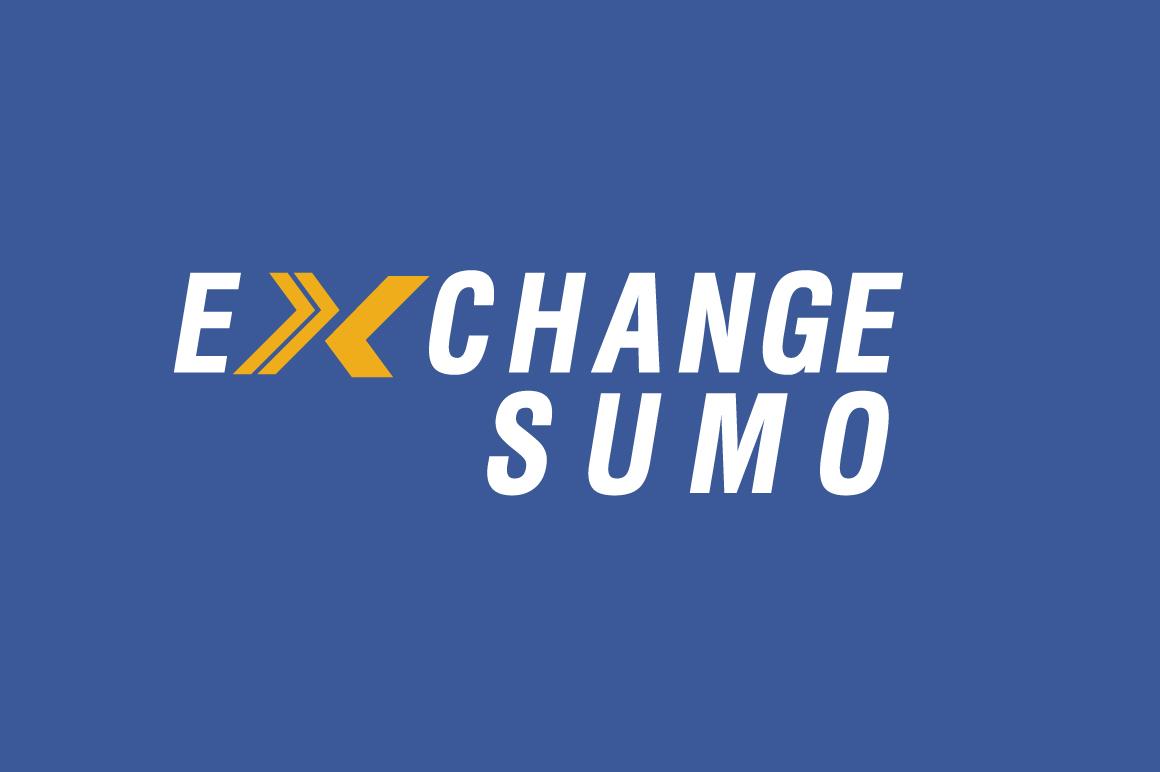 Логотип для мониторинга обменников фото f_5845bad4eeda3601.jpg