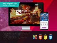 Лид TMC eSports Cup по DoTA2