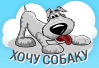 Сайт по подбору и продаже щенков