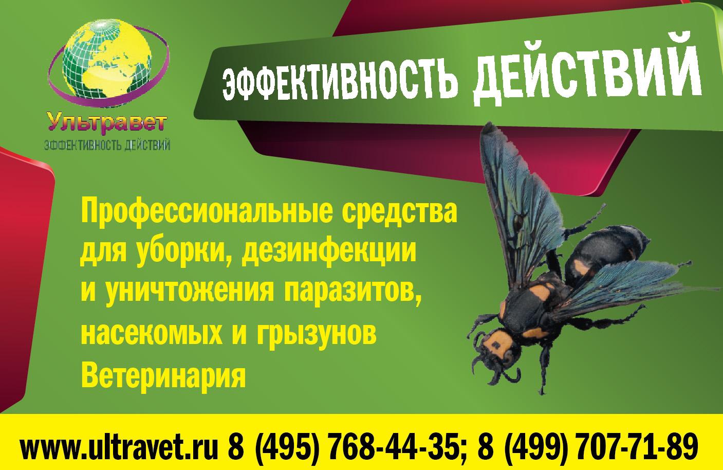 Придумайте дизайн плаката. фото f_9685448f1a3b2c15.jpg