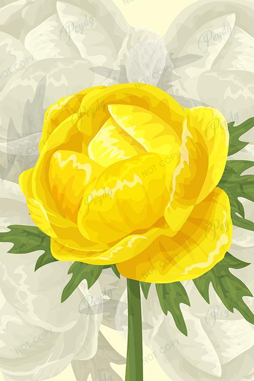 Фотообои желтый пион