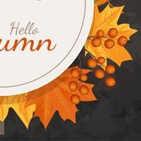 Скидки Осень