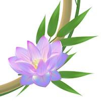 Бамбук рамка Лотос 100% вектор