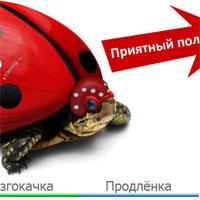 K10design.ru ������ �������