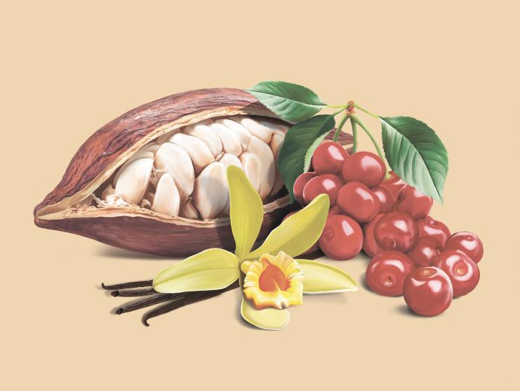 Какао боб, вишня, ваниль