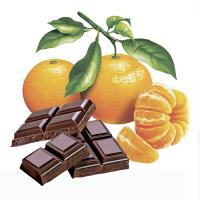 """Иллюстрация для упаковки """"Мандарин и шоколад"""""""