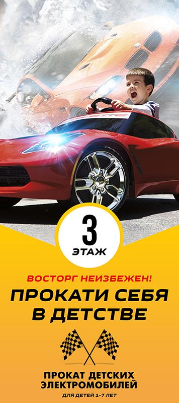 Макет «Прокат электромобилей»