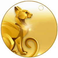 «585 GOLD»