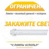 «Светодиодная лампа»