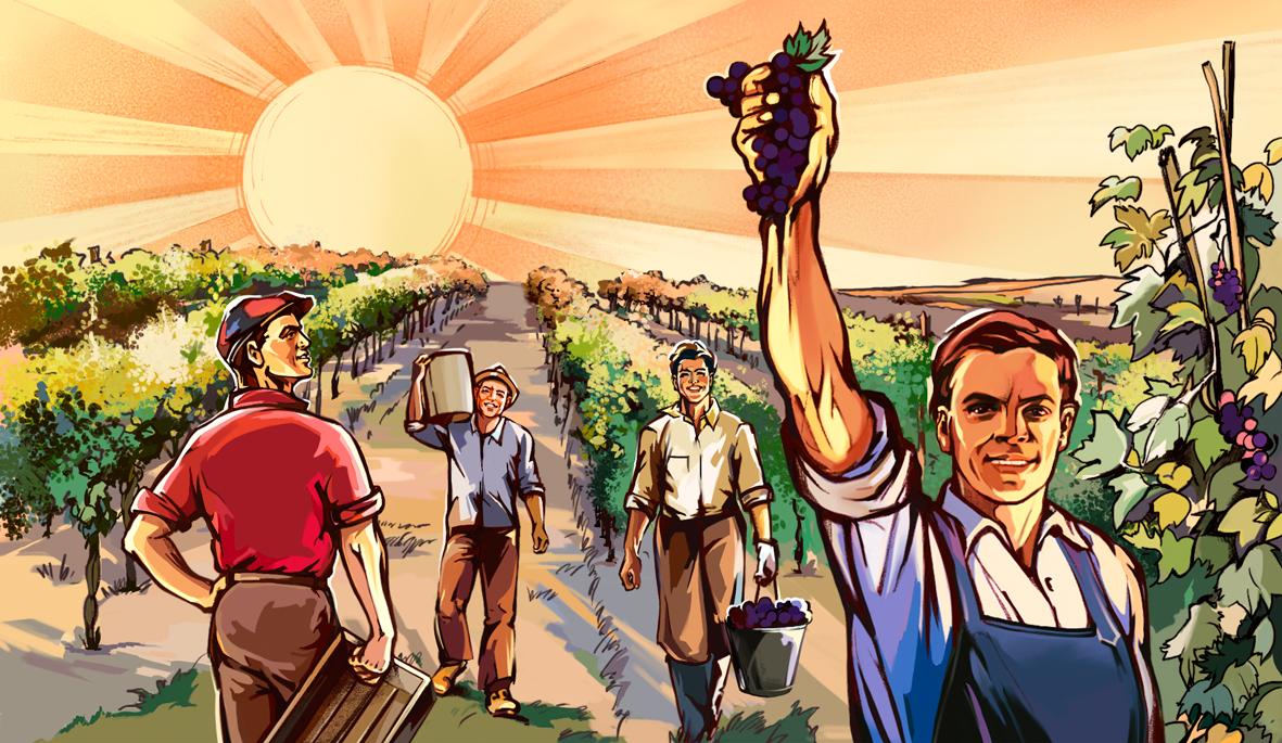 Иллюстрация для этикетки вина (Illustration for wine label)