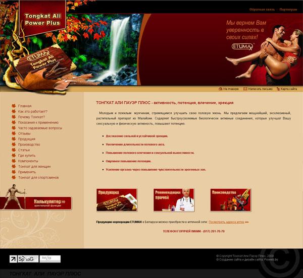 Промо-сайт компании «Андрактив»