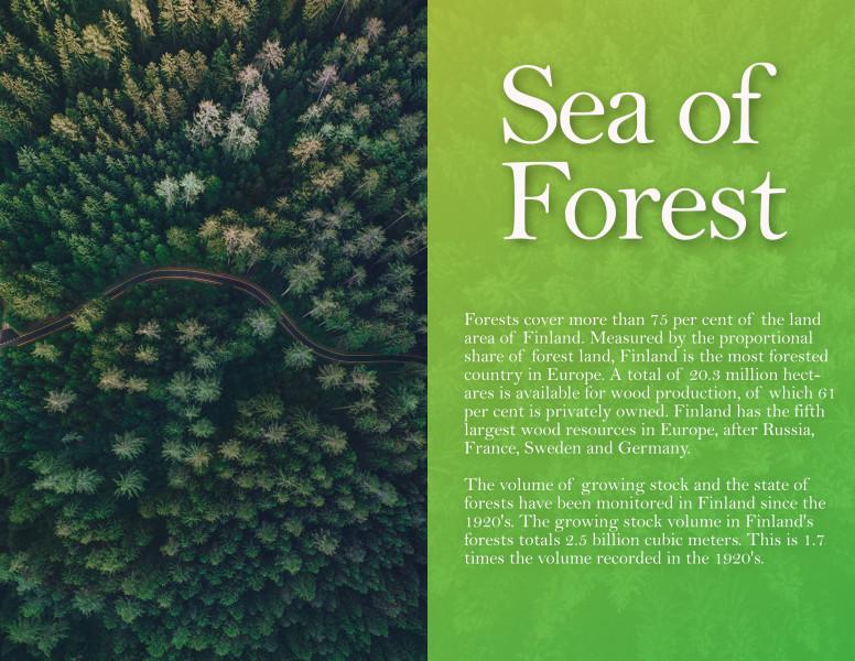 Дизайн заставки для финского сайта по эко-туризму
