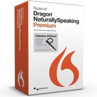 Реверс-инжиниринг Dragon NaturallySpeaking SDK