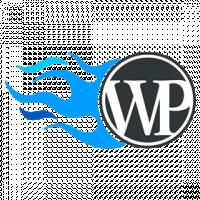 Разработка на cms Wordpress