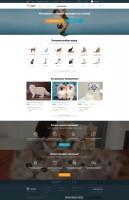 Интернет-магазин породистых кошек и собак
