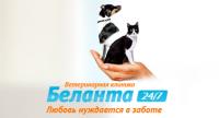 "Ветеринарная клиника ""Беланта"" https://www.belanta.vet/"