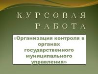 Организация контроля в органах государственного муниципального управления