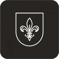 """Разработка логотипа для """"REVILLE"""""""